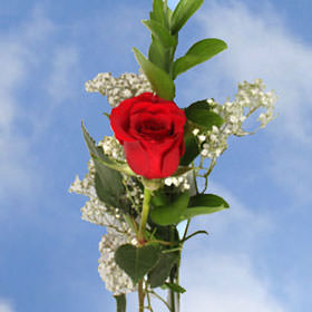 mothers-day-single-red-roses-60-charming-single-rose-arrangements-a-total-of-180-flowers-globalrose